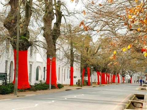 Things to do in Stellenbosch - visit historic buildings in the famous Dorp Street