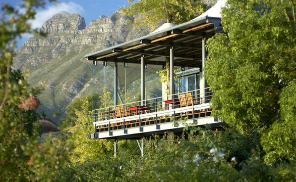 Things to do in Stellenbosch - Wine farms and restaurants: Tokara